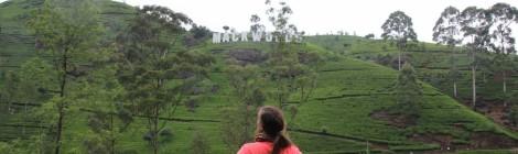 Kandy y las Tierras Altas de Sri Lanka. La vida rodeada de té.