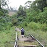 Hacia el sur de Sri Lanka: Ella, Tissa y el Esala Perahera de Kataragama