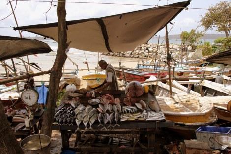 La vida sigue en el sur de Sri Lanka