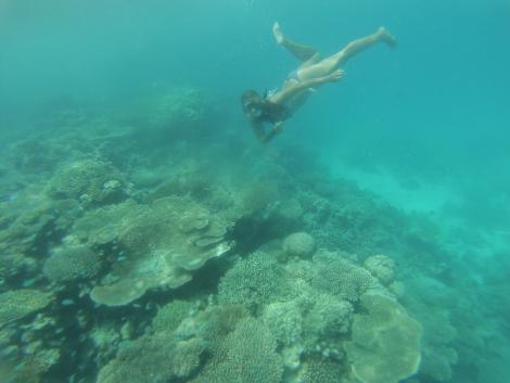Uno de las tantas veces bajo el mar
