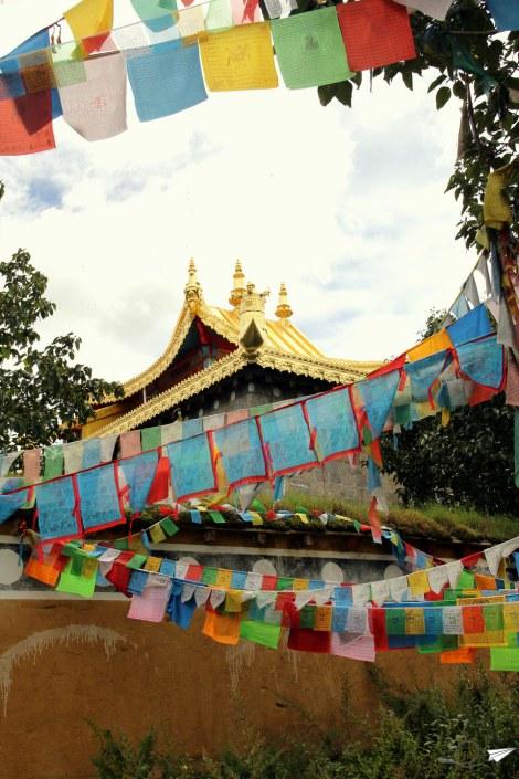 El templo Baiji (o el templo de los 100 pollos)