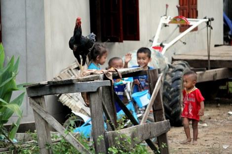 Niños Laos