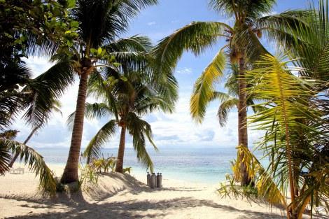 Las aguas de Malapascua – Buceo en Malapascua
