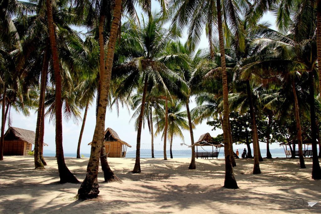 Daku isla