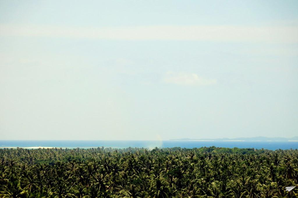 Mar de palmeras Siargao