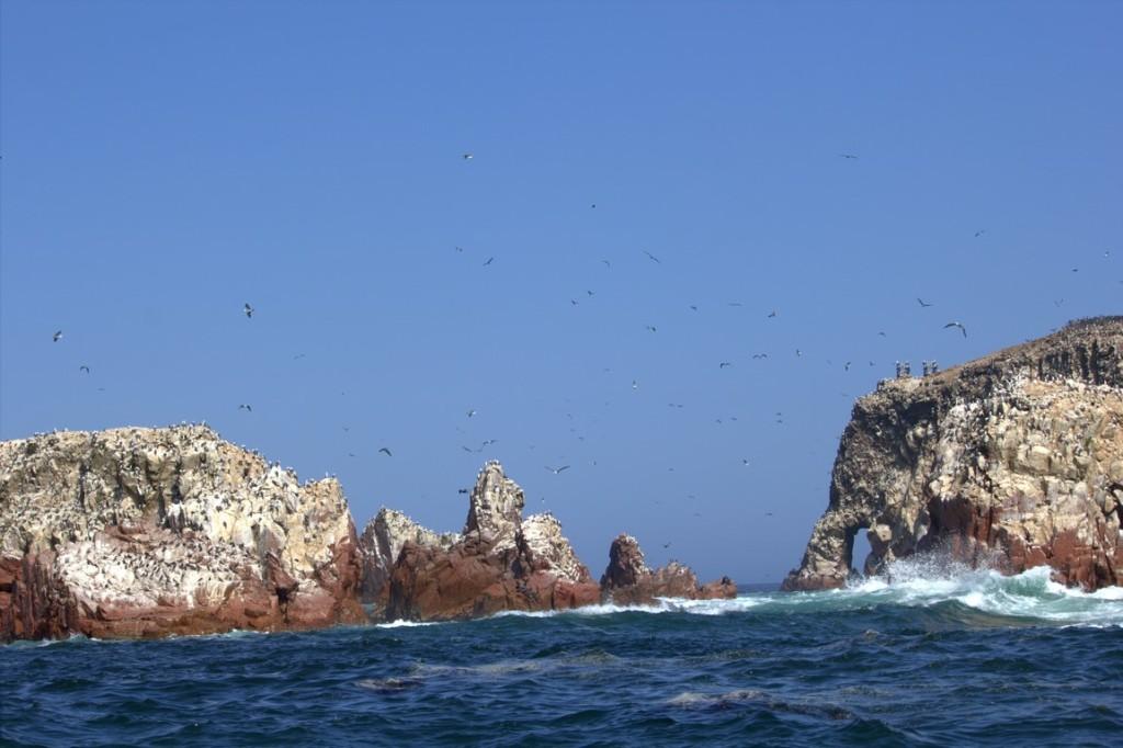 islas-ballestas-peru